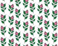 Безшовная розовая картина на прозрачной предпосылке Стоковые Изображения RF