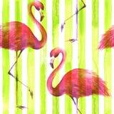 Безшовная розовая картина фламинго бесплатная иллюстрация