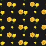 Безшовная розовая картина, флористическая предпосылка Винтажный дизайн цветка иллюстрация штока