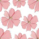 Безшовная розовая картина цветка Стоковое Изображение RF