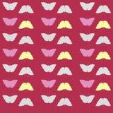 Безшовная текстура бабочки Стоковая Фотография RF