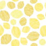 Безшовная текстура лимона Бесконечная предпосылка цитруса Картина плодоовощ сбора Стоковая Фотография