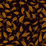 Безшовная текстура листьев осени Стоковая Фотография