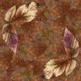 Безшовная текстура картины предпосылки каменных листьев ягоды установила 1 Стоковая Фотография