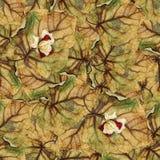 Безшовная текстура картины предпосылки огромных листьев тополя Стоковая Фотография RF