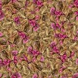 Безшовная текстура картины предпосылки огромных листьев wi тополя Стоковые Изображения