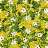 Безшовная текстура картины предпосылки огромных листьев wi тополя Стоковая Фотография RF