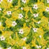 Безшовная текстура картины предпосылки огромных листьев wi тополя Стоковые Фотографии RF