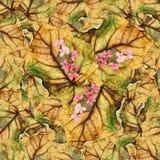 Безшовная текстура картины предпосылки огромных листьев wi тополя Стоковое Изображение RF