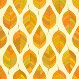Безшовная текстура осени Стоковая Фотография RF