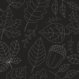 Безшовная текстура осени Стоковые Фото