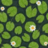 Безшовная текстура пруда вектора с белыми цветя лилиями воды и листьями зеленого цвета Стоковое Изображение RF