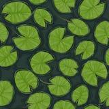 Безшовная текстура пруда с пусковыми площадками лилии на поверхности Стоковое Изображение RF