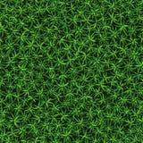 Безшовная текстура свежей зеленой травы Стоковое фото RF