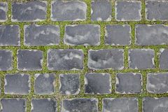 Безшовная текстура следа вымощая камня на зеленой траве Баку Азербайджан в зиме город старый стоковые фото