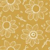 Безшовная текстура солнцецвета Белая нарисованная рука вектора бесплатная иллюстрация