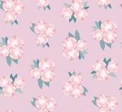 Безшовная текстура с нежными розовыми цветками Стоковая Фотография