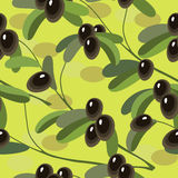Безшовная текстура с оливковой веткой на салатовой предпосылке Стоковые Изображения
