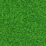 Безшовная текстура травы Стоковое Изображение RF
