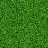 Безшовная текстура травы Стоковые Изображения
