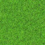 Безшовная текстура травы Стоковое Фото