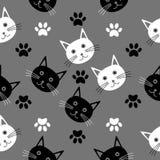 Безшовная текстура шаржа с головами котов Стоковые Изображения