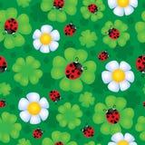Безшовная тема 1 цветка предпосылки Стоковая Фотография RF