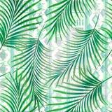 Безшовная тропическая картина с зелеными листьями ладони Стоковое Изображение RF