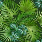 Безшовная тропическая картина с листьями ладони для дизайна или другого ткани пользы бесплатная иллюстрация