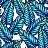 Безшовная тропическая картина с листьями Бесплатная Иллюстрация