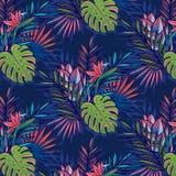Безшовная тропическая картина с ладонями, monstera выходит иллюстрация вектора
