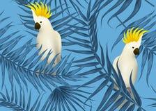 Безшовная тропическая картина, экзотическая предпосылка с ветвями пальмы, листьями, лист, листьями ладони Бесконечная текстура Стоковые Фотографии RF