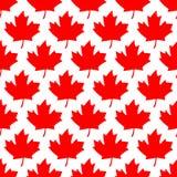 Безшовная упаковочная бумага - листья красного клена Стоковое Фото