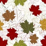 Безшовная флористическая предпосылка с листьями вала Стоковые Изображения RF