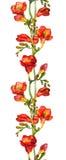 Безшовная флористическая граница с красной акварелью цветет freesias Стоковые Фото