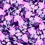 Безшовная флористическая картина с розовыми цветками Стоковая Фотография RF