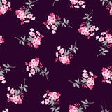 Безшовная флористическая картина с розовыми цветками Стоковое фото RF