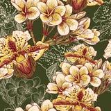 Безшовная флористическая картина с экзотическими цветками Стоковое Фото