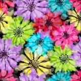 Безшовная флористическая красочная картина Стоковые Изображения