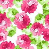 Безшовная флористическая скороговорка с розовыми розами Стоковые Фотографии RF