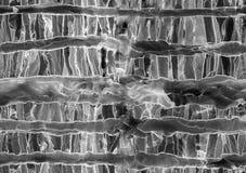 Безшовная черно-белая абстрактная иллюстрация основанная на чернилах алкоголя и акриле бесплатная иллюстрация
