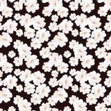 Безшовная элегантная картина с розами цветков Стоковые Фотографии RF