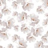 Безшовная элегантная картина с розами цветков Стоковое Изображение