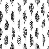 Безшовная monochrome картина feathers-03 Стоковая Фотография RF