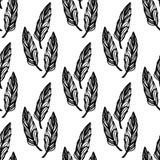 Безшовная monochrome картина feathers-10 Стоковые Фото