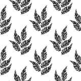 Безшовная monochrome картина feathers-01 Стоковые Фотографии RF
