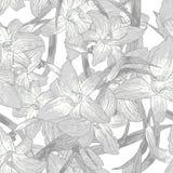 Безшовная monochrome флористическая предпосылка с лилиями иллюстрация вектора