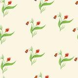 безшовное картины цветков красное Стоковые Фото