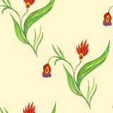 безшовное картины цветков красное Стоковое Фото