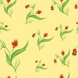 безшовное картины цветков красное Стоковая Фотография RF